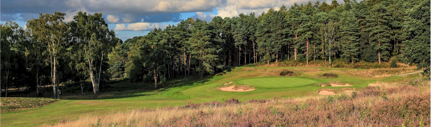 Delamere Forest, 14th hole